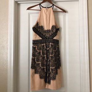 bebe Dresses - Lace cream and black Bebe dress
